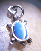HAUNTED MYSTICAL JEWELRY  925 SILVER TURTLE NECKLACE WITCH COVEN